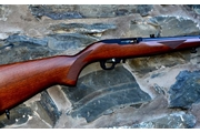 Ruger 10/22 for sale